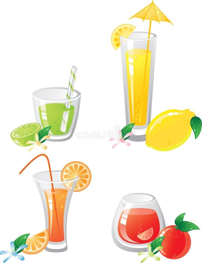 цитрус выпивает fruts иллюстрация вектора