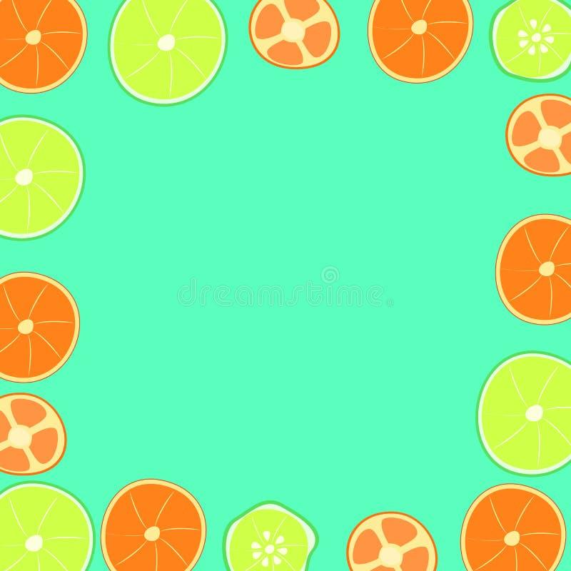 Цитрус на зеленой предпосылке иллюстрация штока