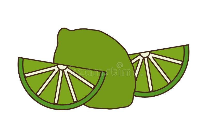 Цитрус плода лимона куска бесплатная иллюстрация