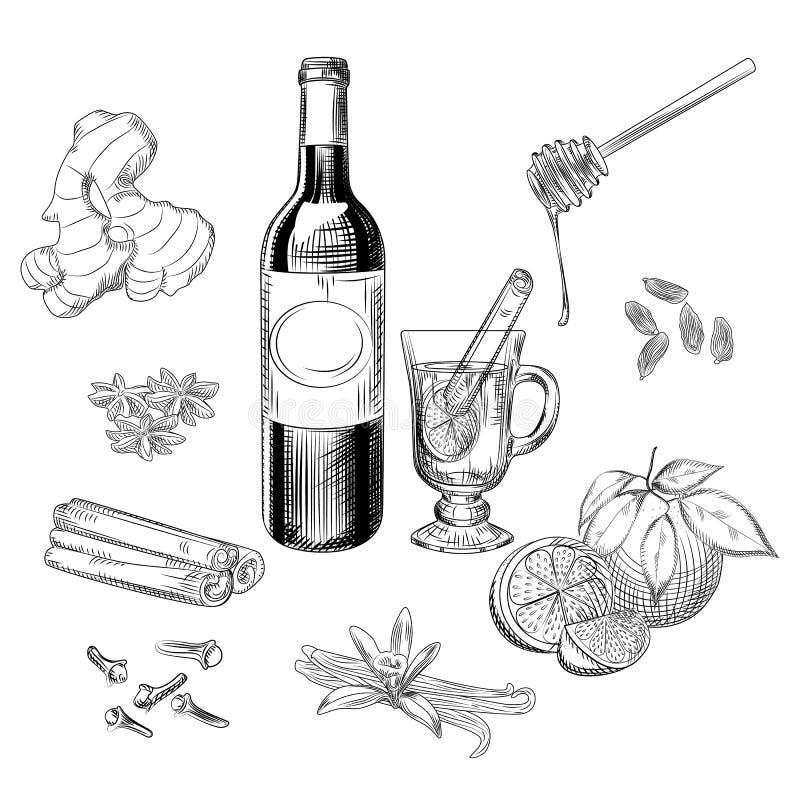 Цитрус руки вычерченный обдумывал набор вина и специй Ингредиенты обдумыванного вина бесплатная иллюстрация
