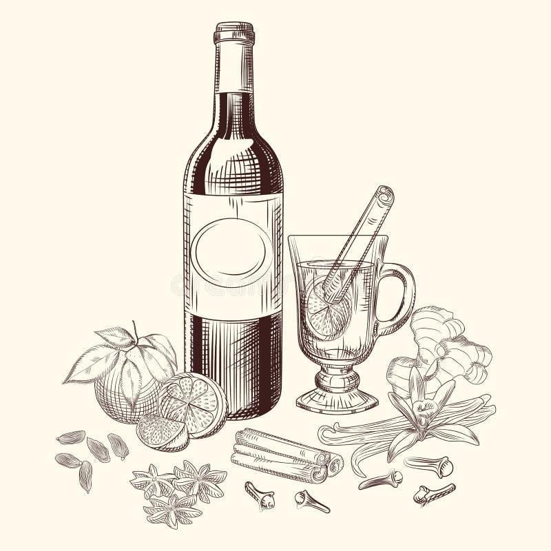 Цитрус руки вычерченный обдумывал набор вина и специй Ингредиенты обдумыванного вина иллюстрация вектора