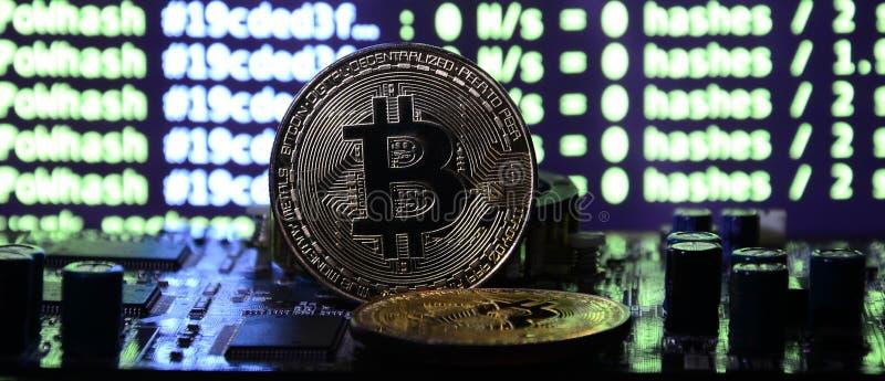 Цифровой процесс cryptocurrency минируя путем использование GPUs Bitcoins и видеокарта на работая дисплее и минируя экране стоковое фото
