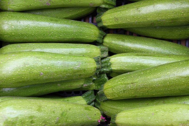 Цукини Свежий цукини, зеленые овощи на рынке местного фермера, свеже сжатом courgette, сквоше лета Органическое зеленое zucch стоковые изображения