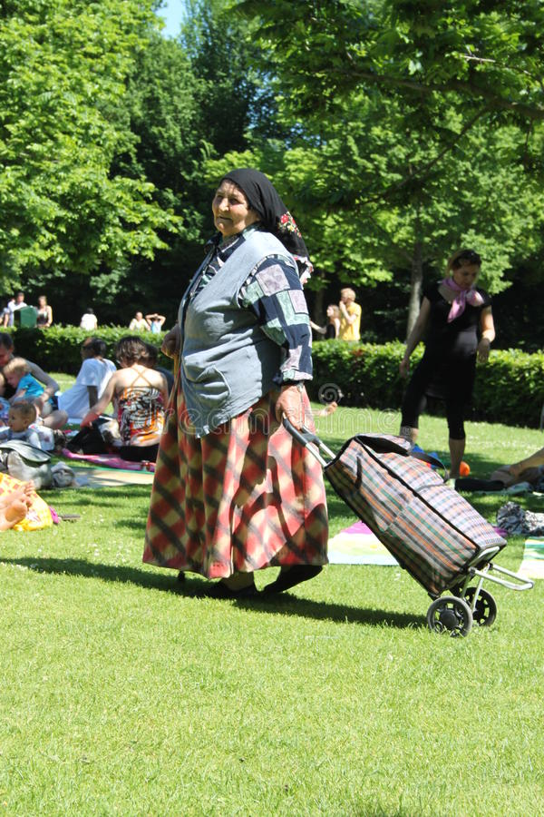 Цыганская женщина с тележкой стоковое изображение rf