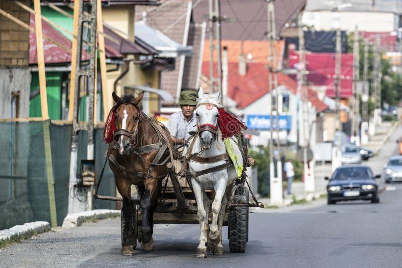 Цыган в Румынии делая его работы по дому лошадью и экипажом стоковое изображение