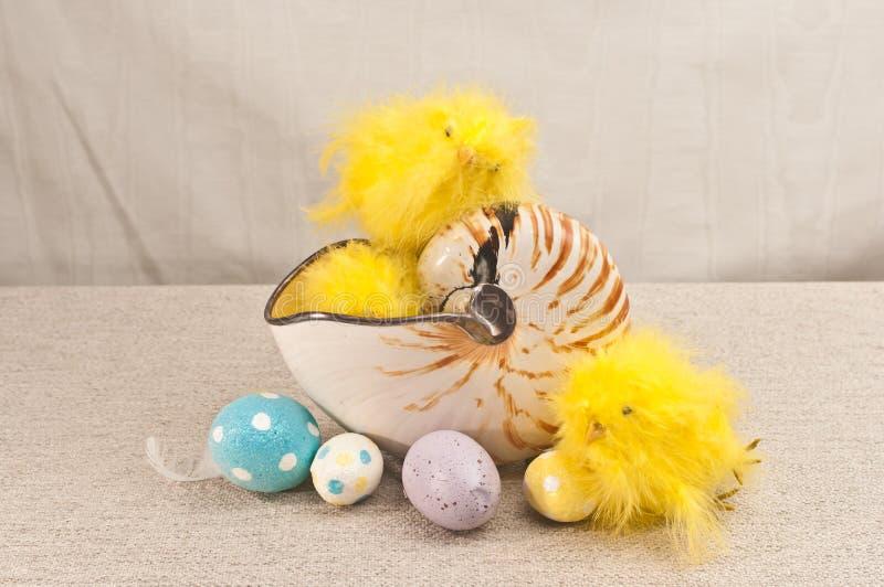 3, цыпленоки желтых, заполненных, младенца в раковине nautilus и и 4, пасха, яйца конфеты стоковое изображение rf