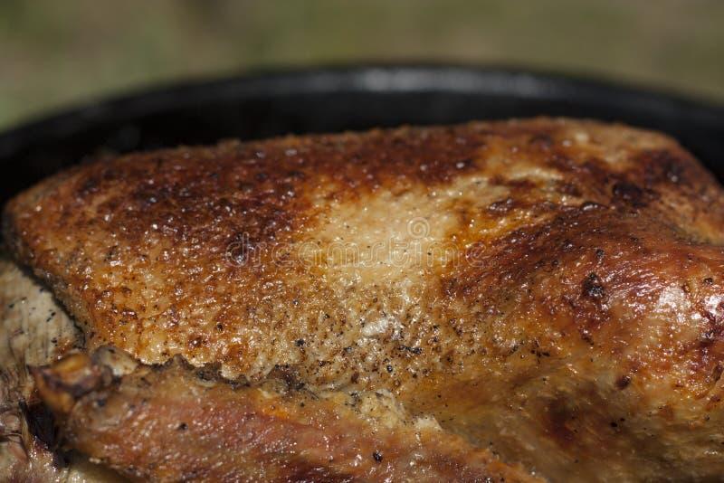 Цыпленок зажаренной в духовке утки с хрустящим фото кожи стоковая фотография rf