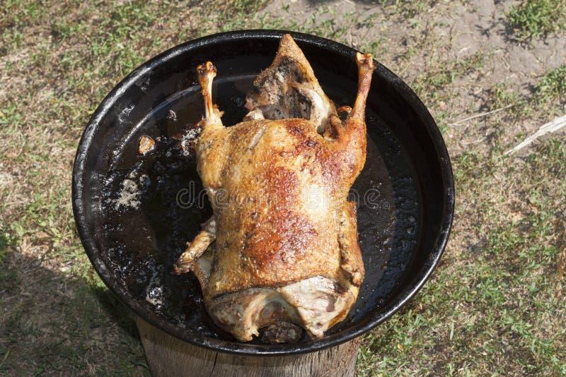 Цыпленок зажаренной в духовке утки с хрустящим фото кожи стоковые фотографии rf