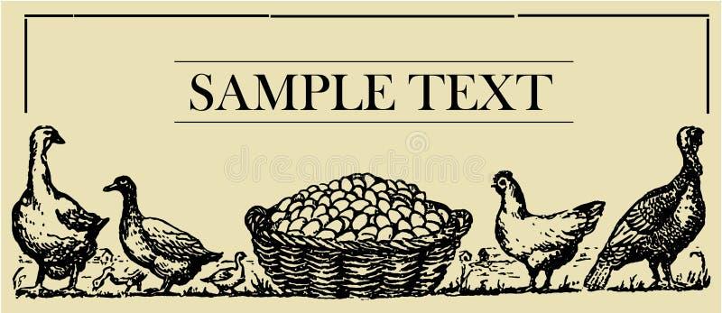 цыплятина доски подписывает стоковое изображение
