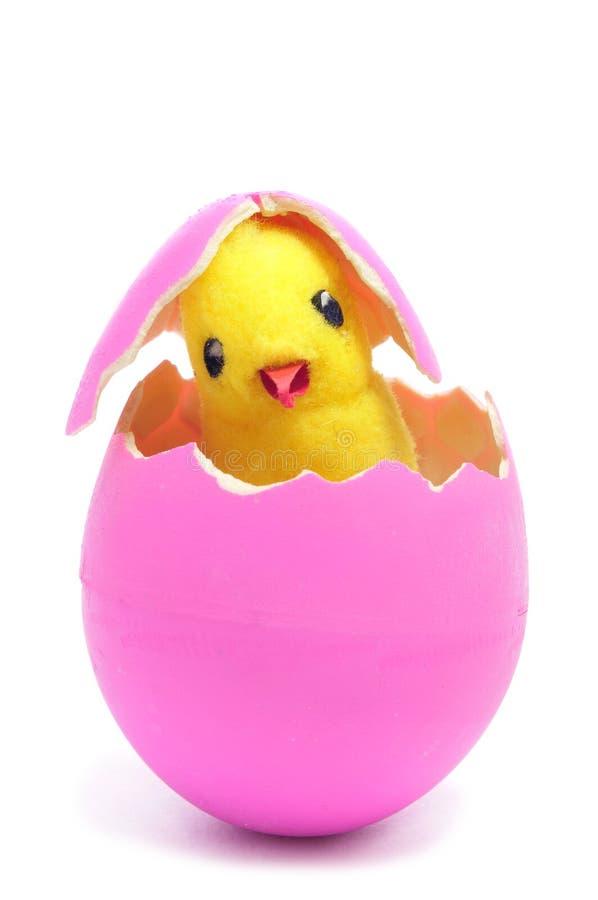 Цыпленок игрушечного и насиженное розовое пасхальное яйцо стоковое изображение rf