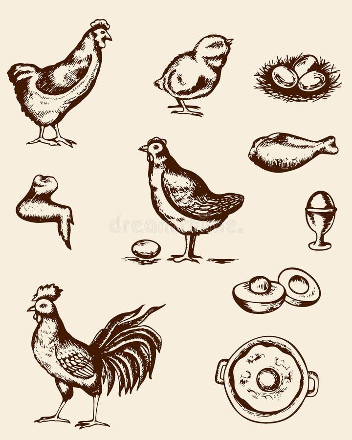 Цыпленок и яичка иллюстрация вектора