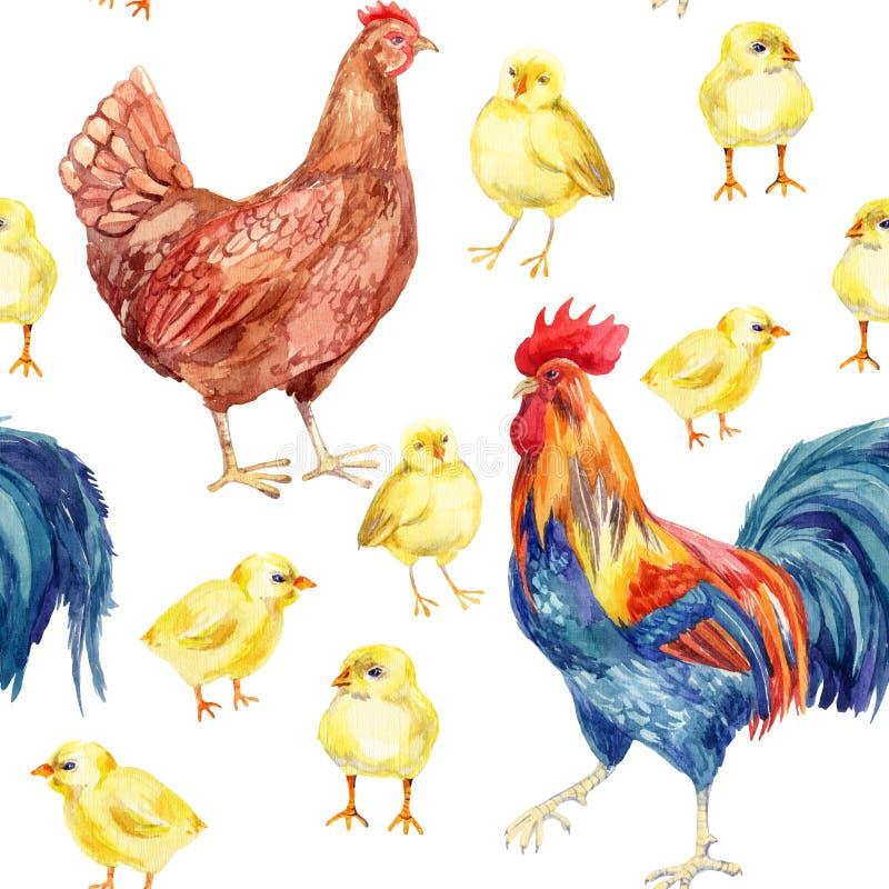 Цыпленок, курица, петух самана коррекций высокая картины photoshop качества развертки акварель очень иллюстрация вектора