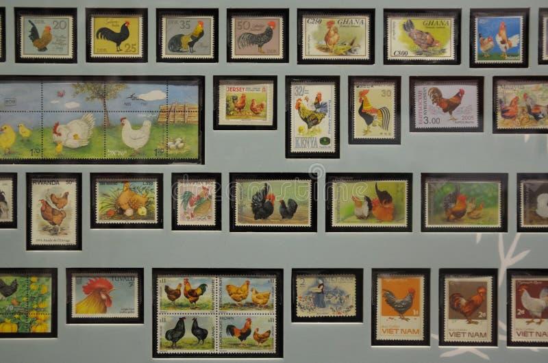 Цыпленок штемпелюет экспонаты collectibles стоковая фотография rf
