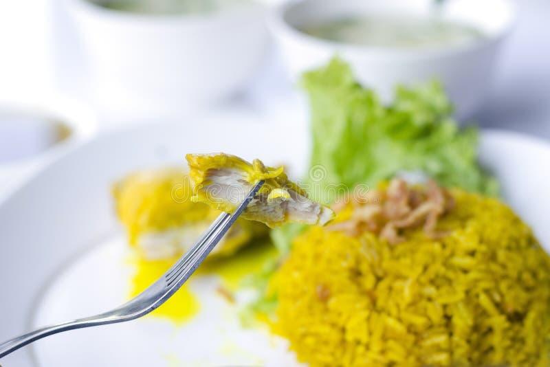 Цыпленок Biryani с зелеными чатнями стоковое изображение rf