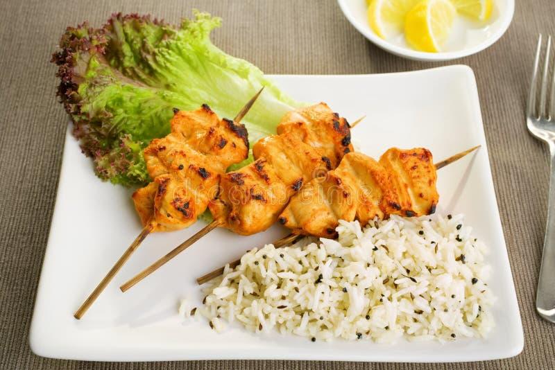 Цыпленок Tandoori стоковые фото