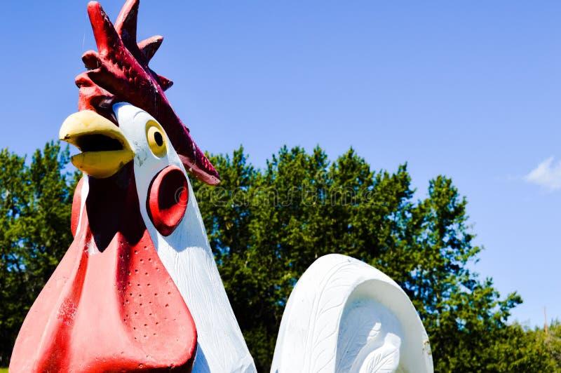 цыплятина фермы цыпленка интегрированная близкая течет стоковая фотография