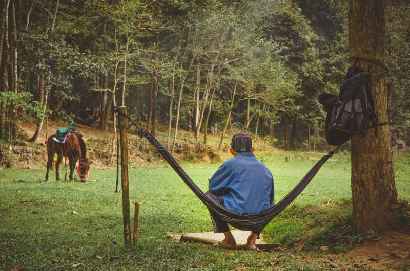 Чабан отдыхает в гамаке и наблюдает его осла который пасет в выгоне Путешествие через северный Таиланд стоковая фотография rf
