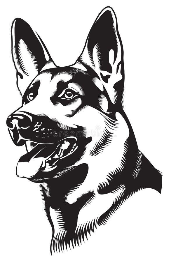чабан собаки иллюстрация вектора