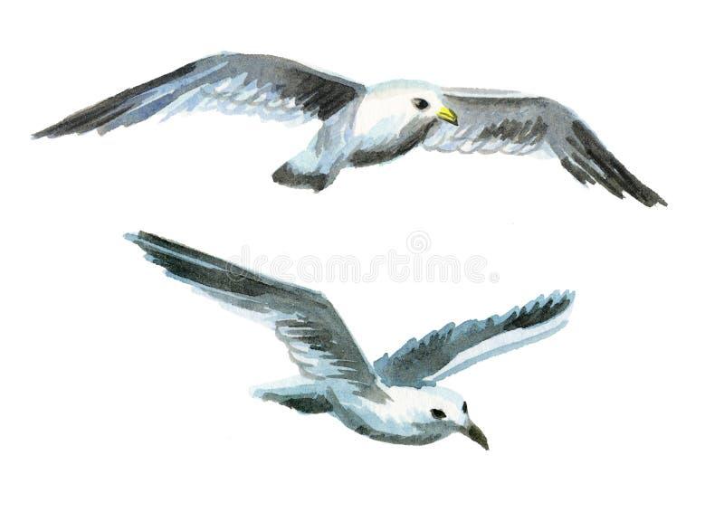 Чайки изображение иллюстрации летания клюва декоративное своя бумажная акварель ласточки части бесплатная иллюстрация