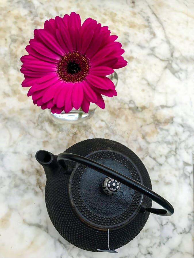 Чайник и gerbera стоковое фото rf