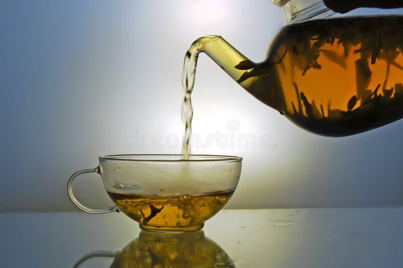 чайник чая чашки стеклянный стоковое фото rf