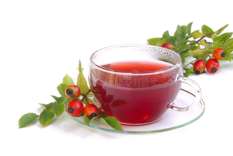 Чай вальмы Rose стоковое фото