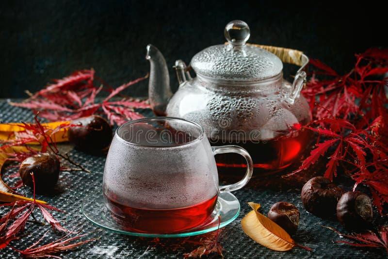 Чай гибискуса осени красный стоковая фотография
