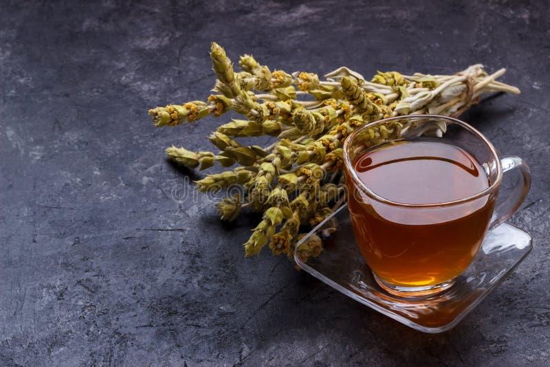 Чай горы травяной стоковые изображения