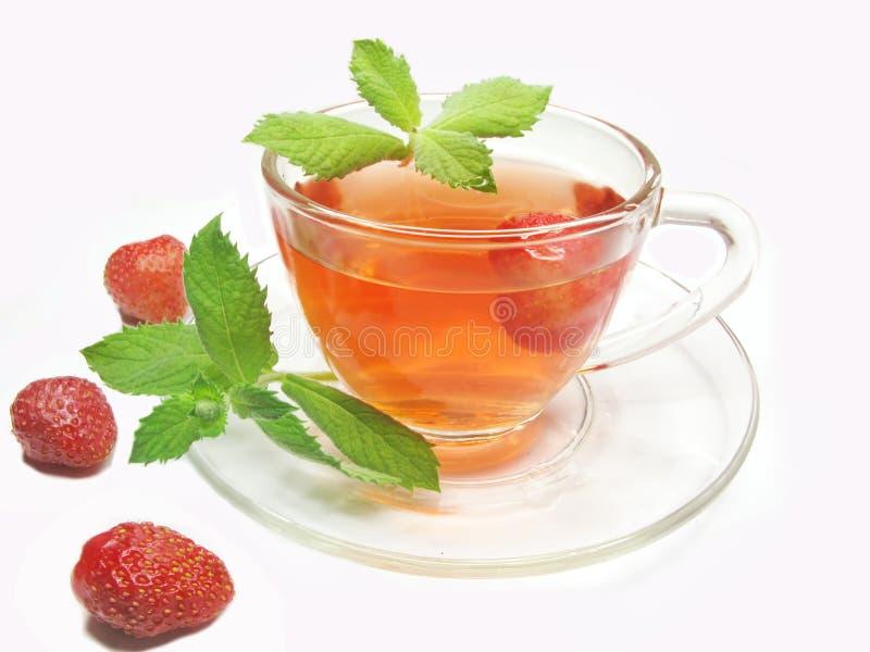 чай клубники плодоовощ стоковое изображение