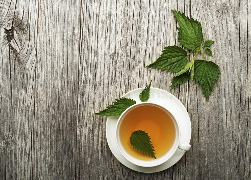 Чай крапивы стоковые изображения