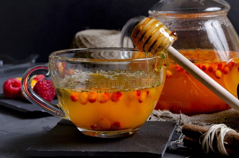 Чай крушины моря витамина здоровый в стеклянных чашках со свежими сырцовыми ягодами крушины моря стоковое фото