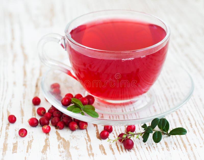 Download Чай клюквы стоковое фото. изображение насчитывающей кружка - 33739658