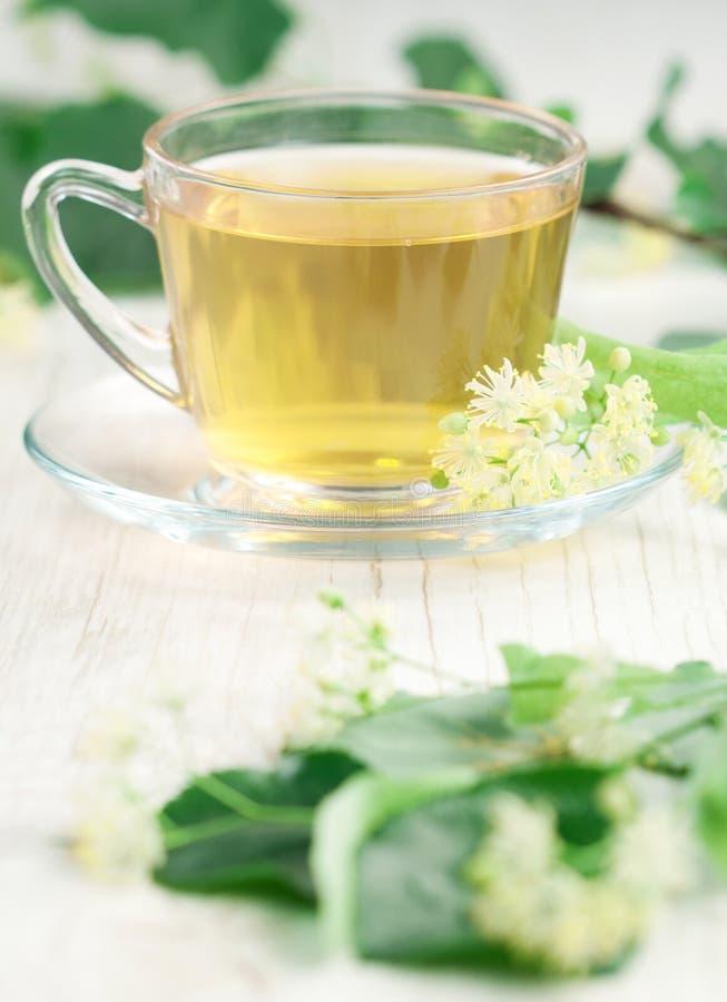 чай липы чашки стоковое изображение