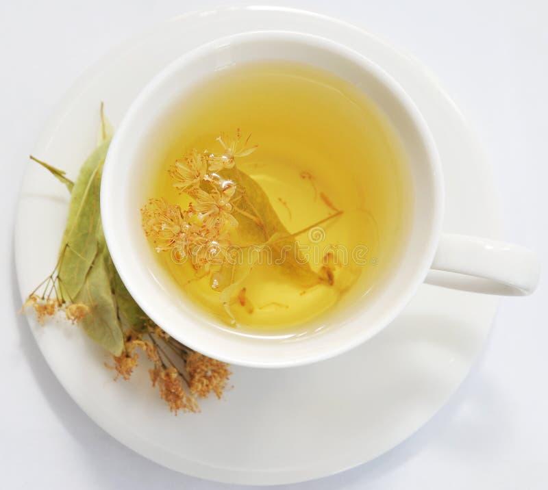 чай липы стоковая фотография rf