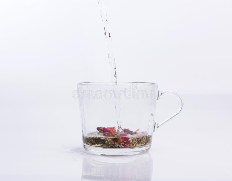Чай лить в стеклянную чашку изолированную на белизне стоковое изображение rf