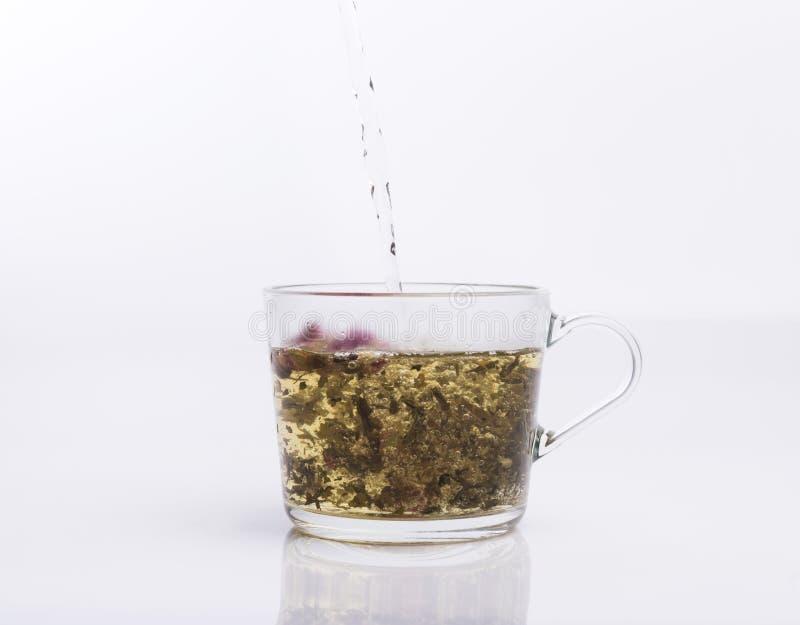 Чай лить в стеклянную чашку изолированную на белизне стоковая фотография rf