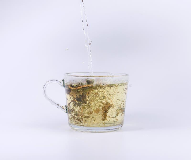 Чай лить в чашке изолированной на белизне стоковое фото rf