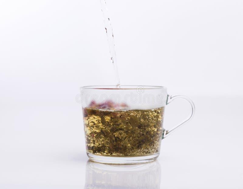 Чай лить в чашке изолированной на белизне стоковые фотографии rf