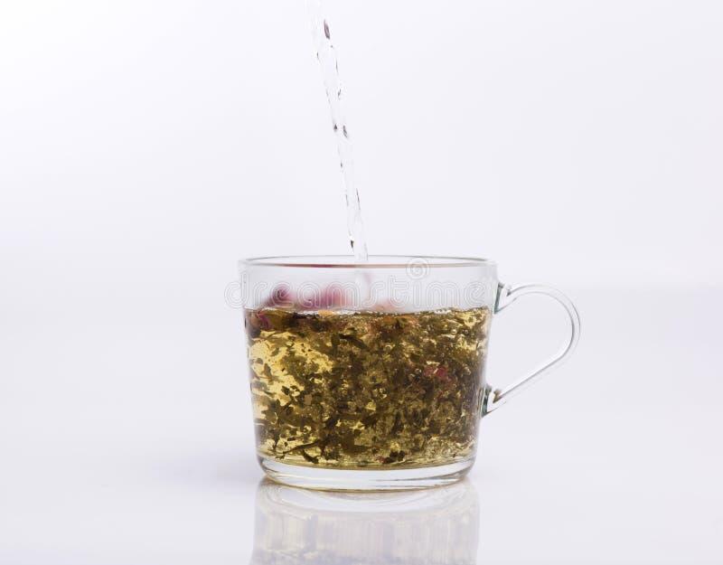 Чай лить в чашке изолированной на белизне стоковая фотография rf