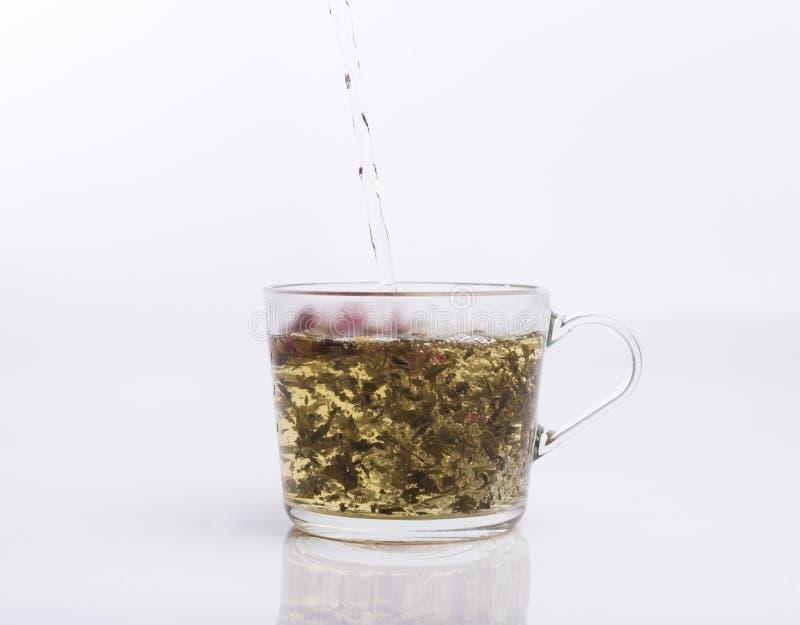 Чай лить в чашке изолированной на белизне стоковые фото