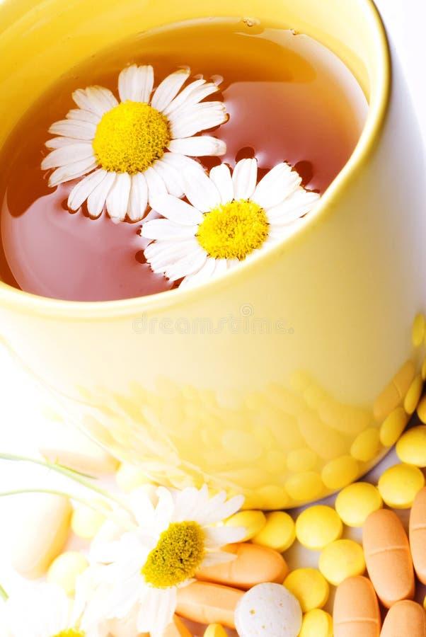 чай пилек стоцвета стоковое фото
