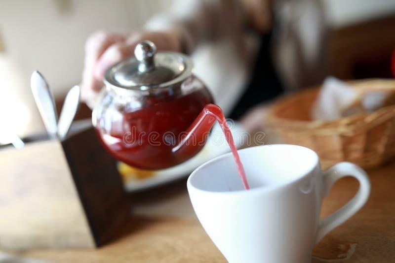 Чай плода человека лить стоковые фотографии rf