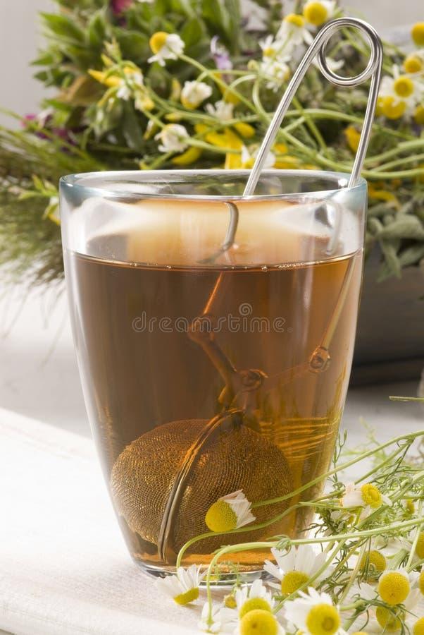 чай стоцвета травяной стоковые фото