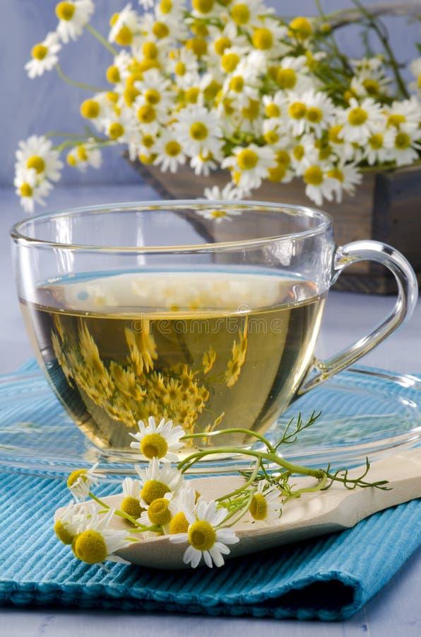 Чай стоцвета травяной стоковое фото
