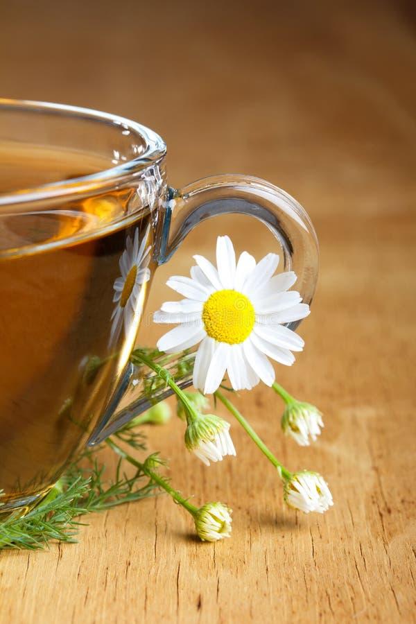 чай стоцвета стоковое изображение rf