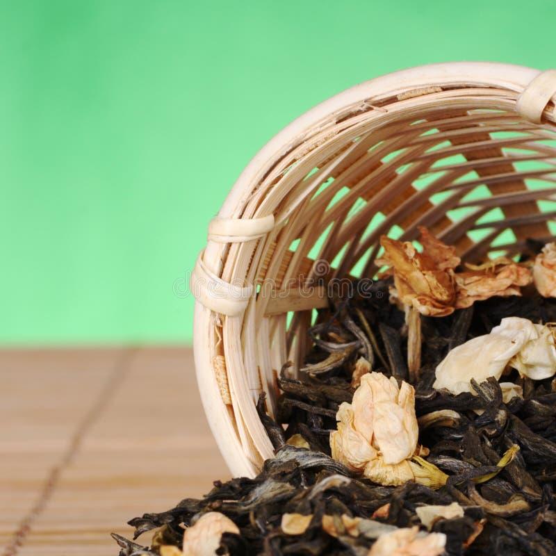 чай стрейнера жасмина стоковое изображение rf