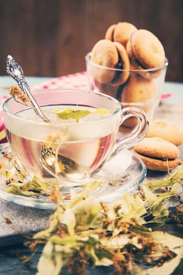 Чай с липой стоковые изображения