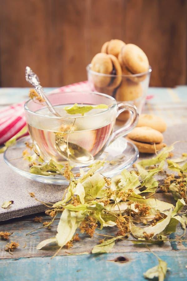 Чай с липой стоковые изображения rf