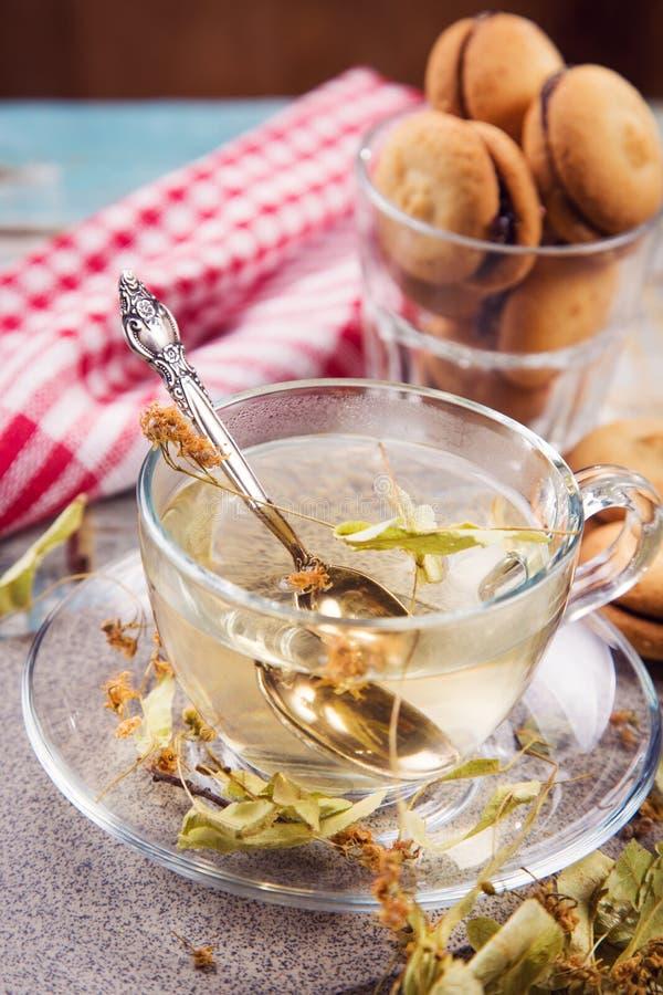 Чай с липой стоковая фотография rf