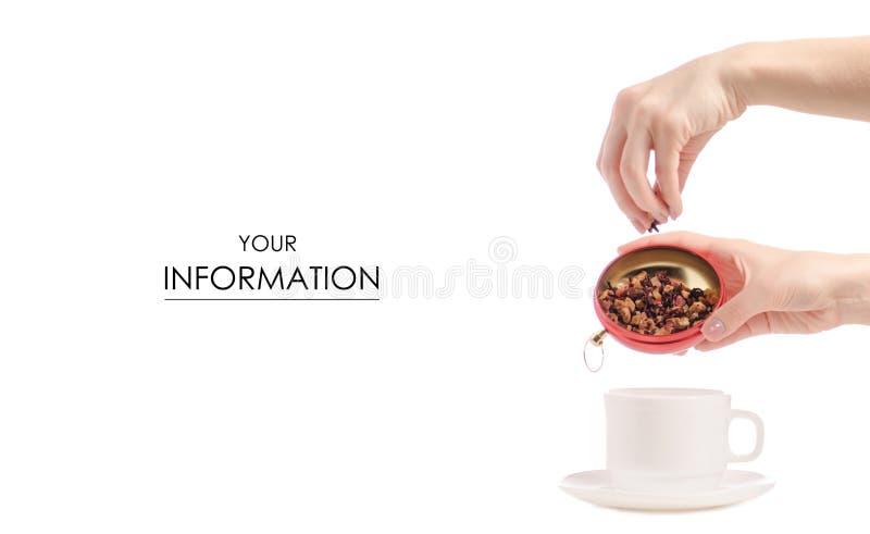 Чай с кусками плодоовощ льет в картину чашки стоковое изображение